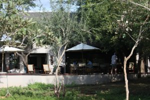 Mvuradona Lodge - Marloth Park