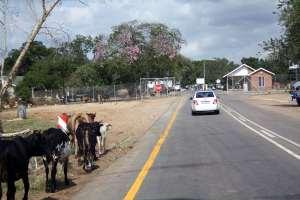 Mananga Border - Swasiland